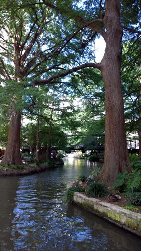 San Antonio Texas River Walk Trees Flowers Bridge