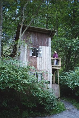 Amazing Doe Bay Cabin On Orcas Island Download Free Architecture Designs Scobabritishbridgeorg