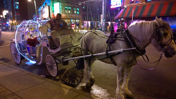 Uptown Carriages - Downtown Memphis Carriage Rides