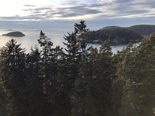 Adventure Terra sunset tree canopy climb Deception Pass State Park view north to pass from top
