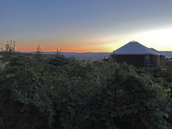 Cave B Winery And Resort Desert Yurt And Hiking Trails