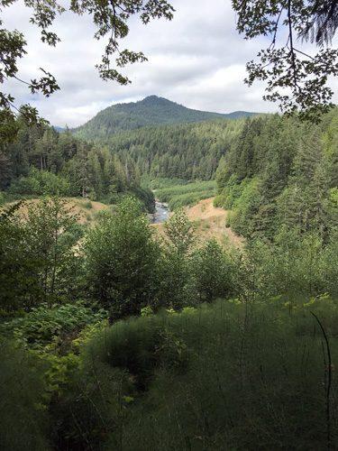 Elwha River Dam removal site