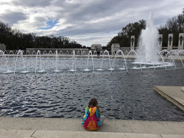 Contemplating World War II Memorial on National Mall in Washington DC
