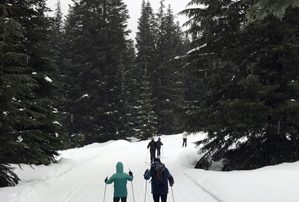 Stevens Pass Nordic Center cross-country ski trails