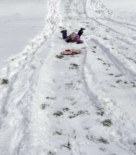 Sledding on Whidbey Island