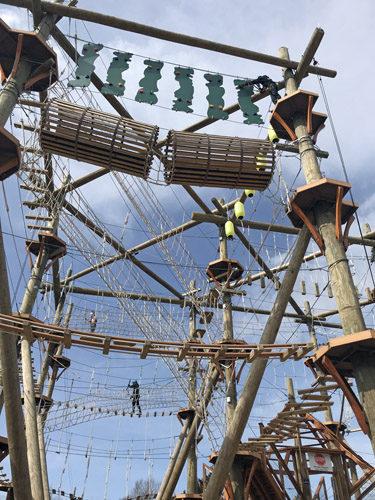High Trek Adventures rope course zip line Everett looking up