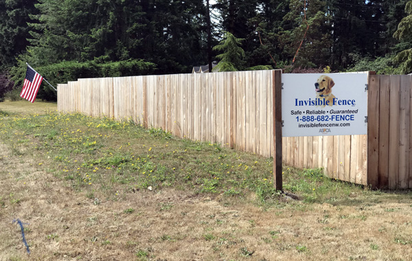 The Not So Invisible Fence Company in Port Townsend