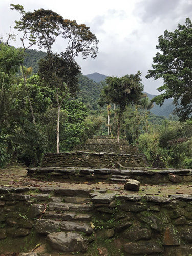 Circular terraces rising up mountainside at The Lost City Ciudad Perdida
