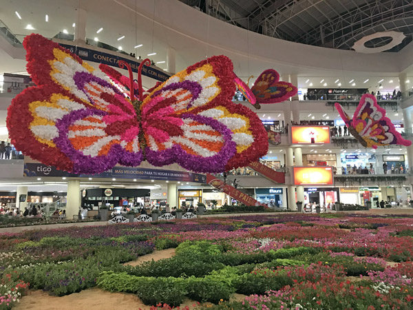 Colombia mall Festival of the Flowers large flying butterflies display