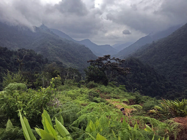 Rain clouds over Sierra Nevada mountains jungle trail to The Lost City Ciudad Perdida