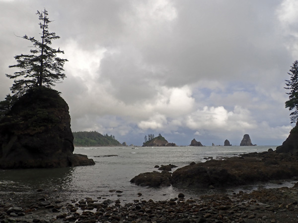 Olympic National Park Peninsula Scott's Bluff area sea stacks hikers