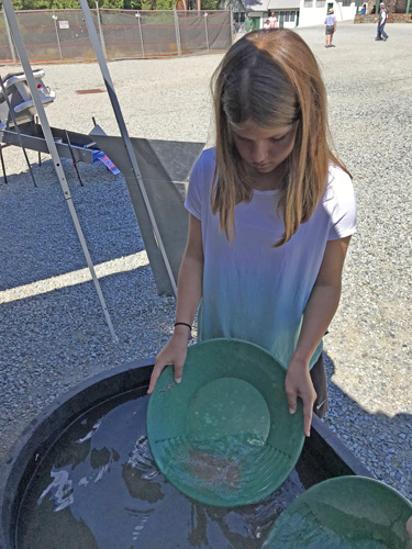 Panning for gold at Empire Mines State Park annual Miners Picnic