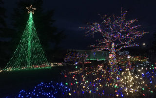 Greening of Coupeville Christmas lights in Cooks Corner Park