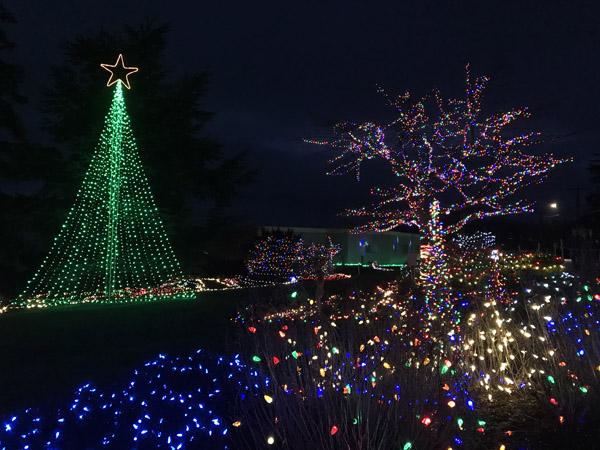 Greening of Coupeville Christmas lights in Cooks Corner Park