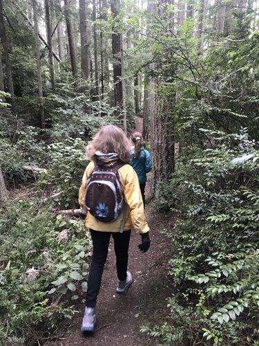 Hiking on Whidbey Institute forest trails in Clinton on Whidbey Island